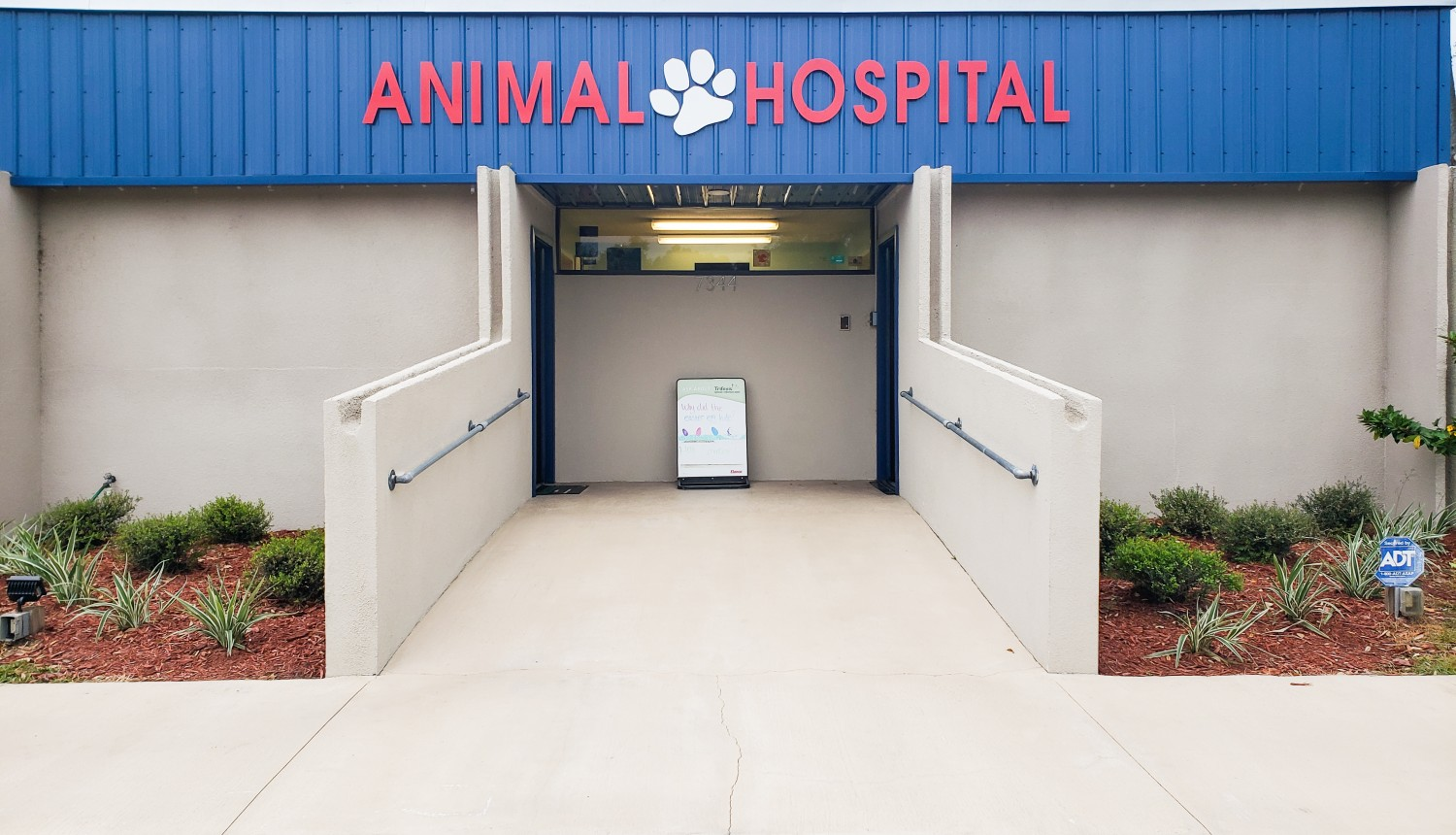 Keyston Heights Animal Hospital - Veterinarian serving Keystone Heights, Melrose, Hawthorne, and Starke FL - Welcome to our site!